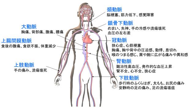 血管科 | 血管科 | 心臓血管内科...