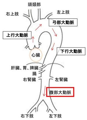 左側 みぞおち みぞおちと背中の鈍痛 すい炎や胃潰瘍かも。病院に行くべき?何科を受診?