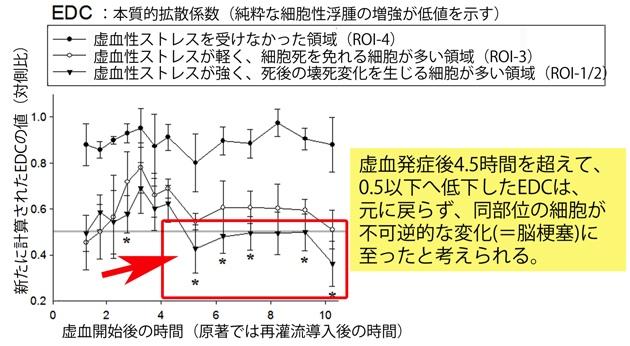 (図2)局所脳虚血発症後急性期の、脳の各領域の組織生存率とEDCとの関係